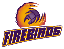 Queensland Firebirds Logo