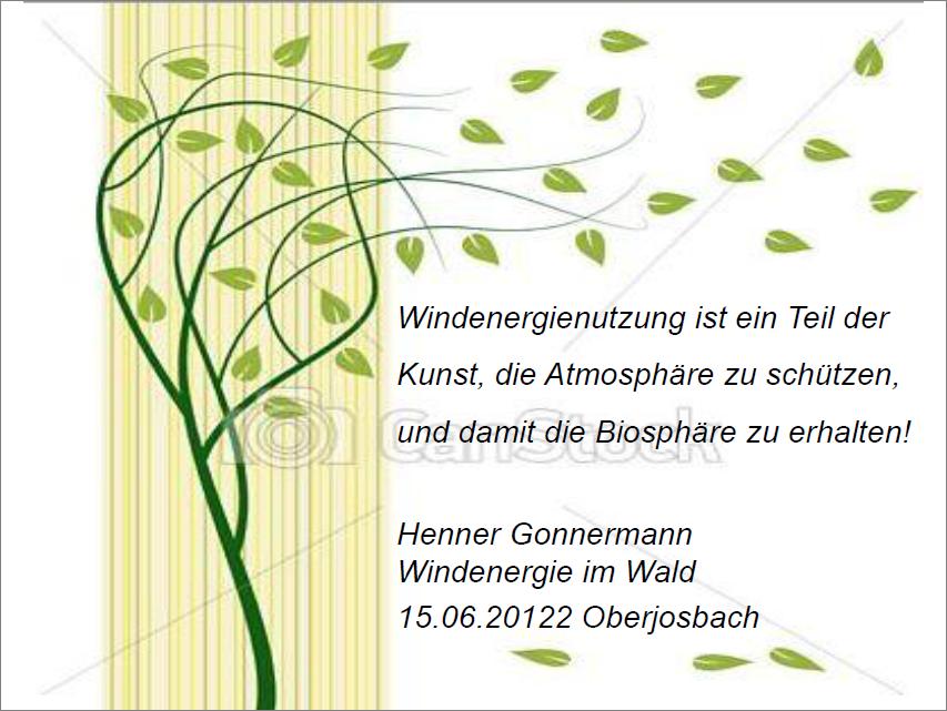 Auszug - Vortrag H. Gonnermann