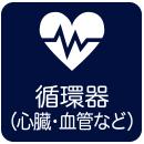 循環器(心臓・血管など)の障害をお持ちの方の認定要領