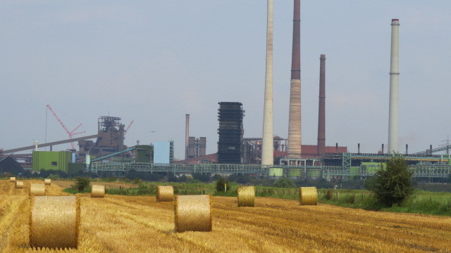 Industrie und Landwirtschaft am Rhein