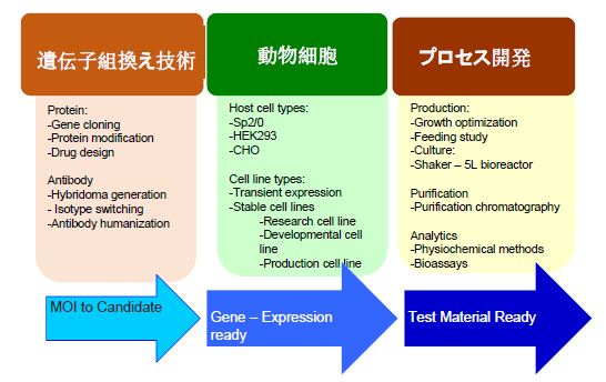 TPG社の技術の概要