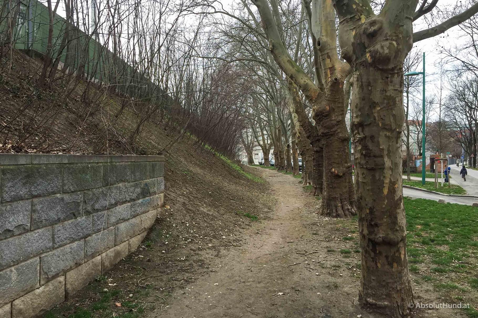 Hundeauslaufplatz Durchlaufstraße