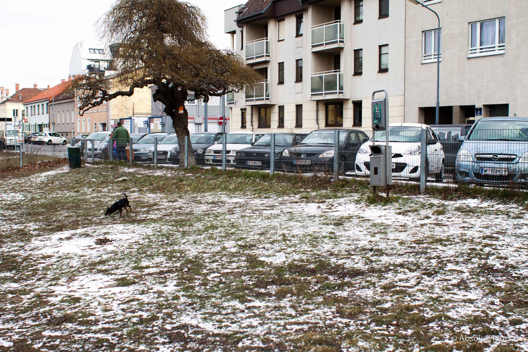 Hundezone -Schrickgasse, 1220 Wien