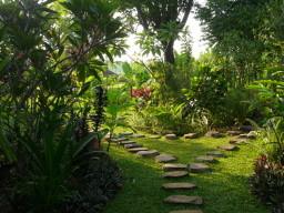 Pfade im Garten