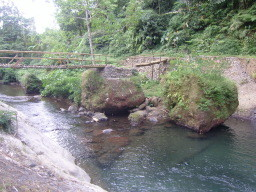 bamboo - bridge