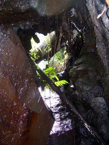 Blick aus einer wasserdurchflossenen Grotte