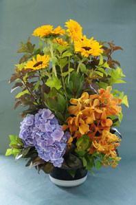 フラワーギフト・花・お祝い・アレンジ・贈り物 る人を元気にしてくれるヒマワリを使ったアレンジ