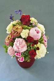 フラワーギフト・花・お祝い・アレンジ・贈り物 シャクヤク・バラ・ジニアなどを使ってにぎやかに