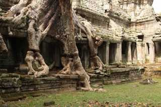 Amazing temples of Angkor