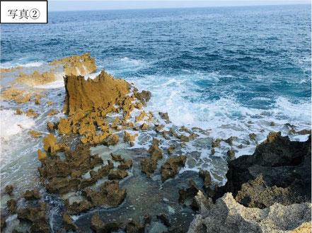 2020.8徳之島の海蝕洞 杉山撮影