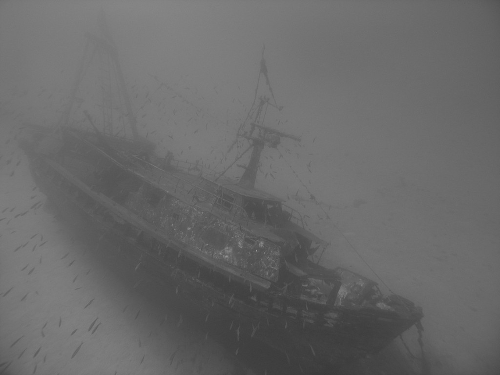 "Wreck ""Fortunal"" - Vis"