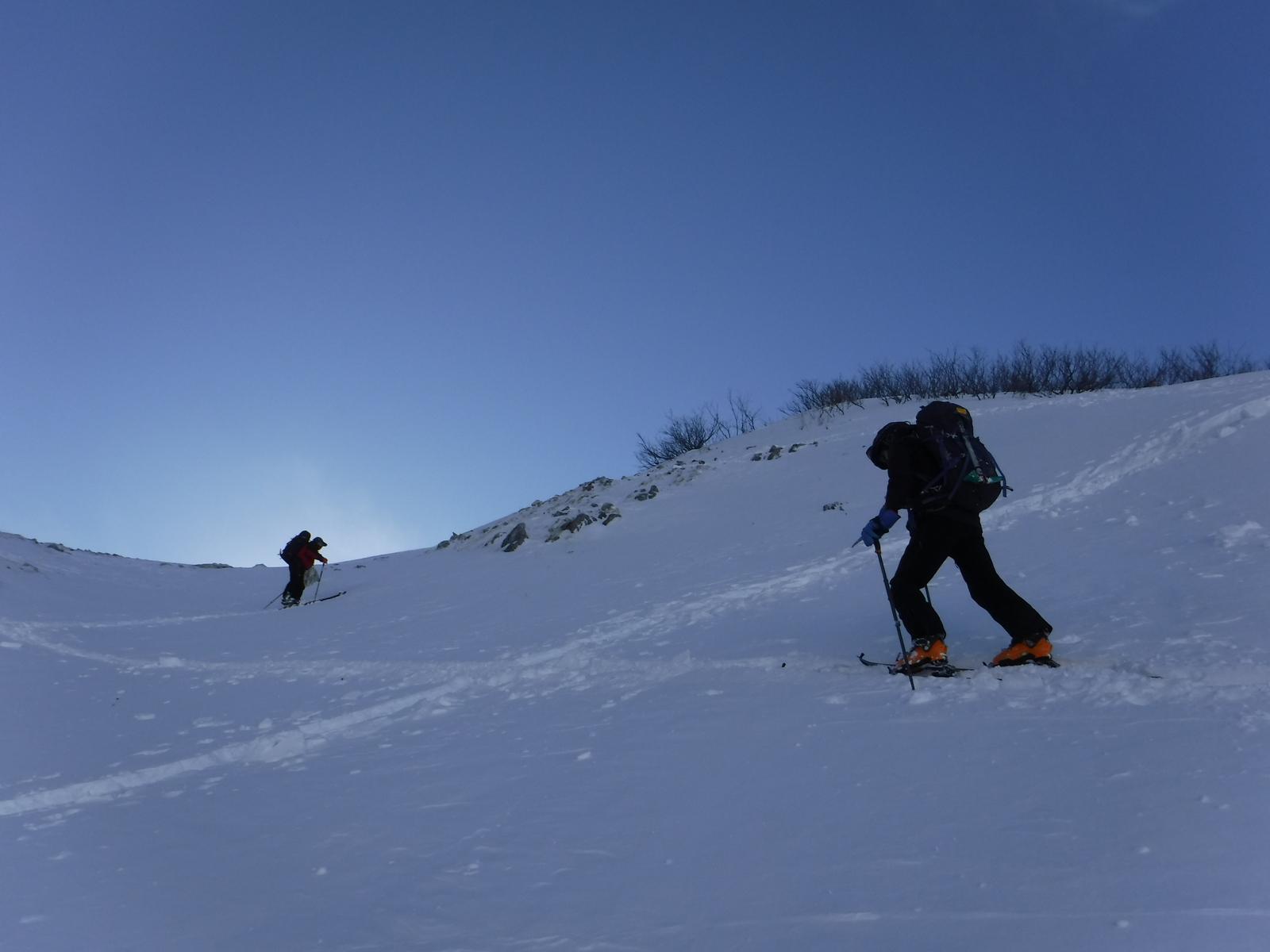 11/22 8:50 大走り 2440m付近、新雪を登る