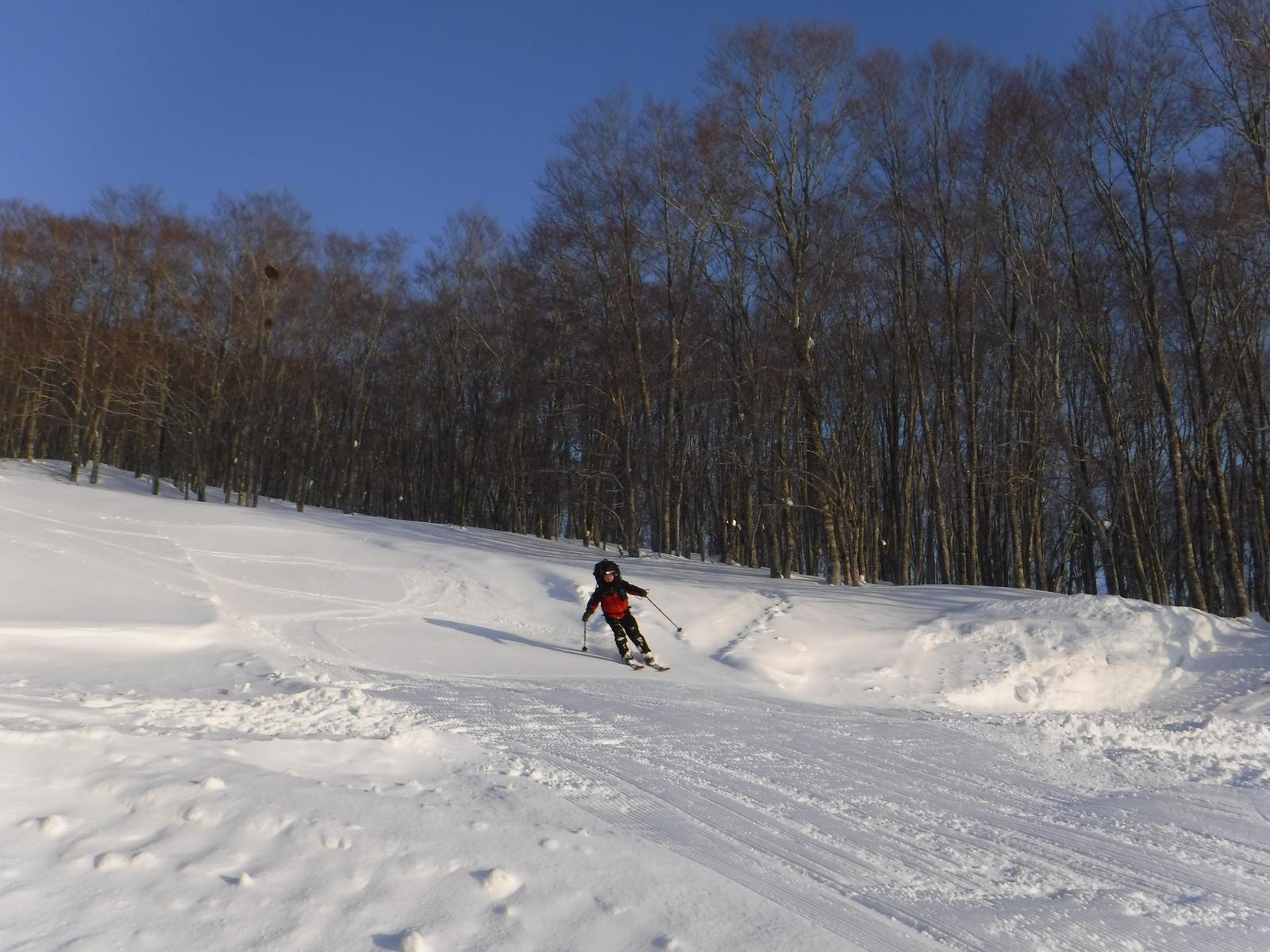 7:00 池の平スキー場、上部の旧ゲレンデを滑る
