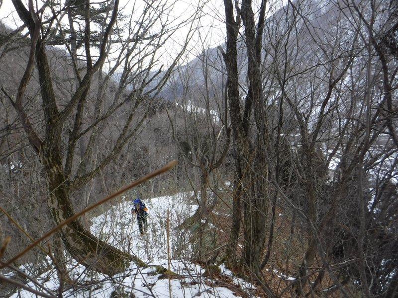 8:20 登山道は無い尾根を登る。境界標識維持のため?、H11年に刈開きとのナタメあり。