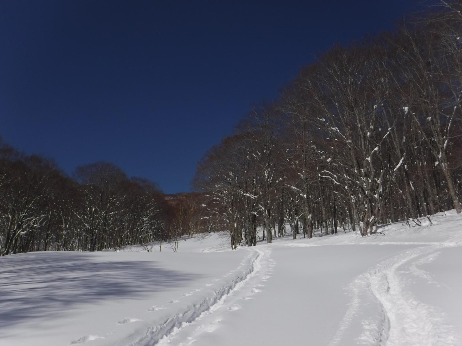 9:50 池の平スキー場、リフトの支柱だけ残る旧コースを登る
