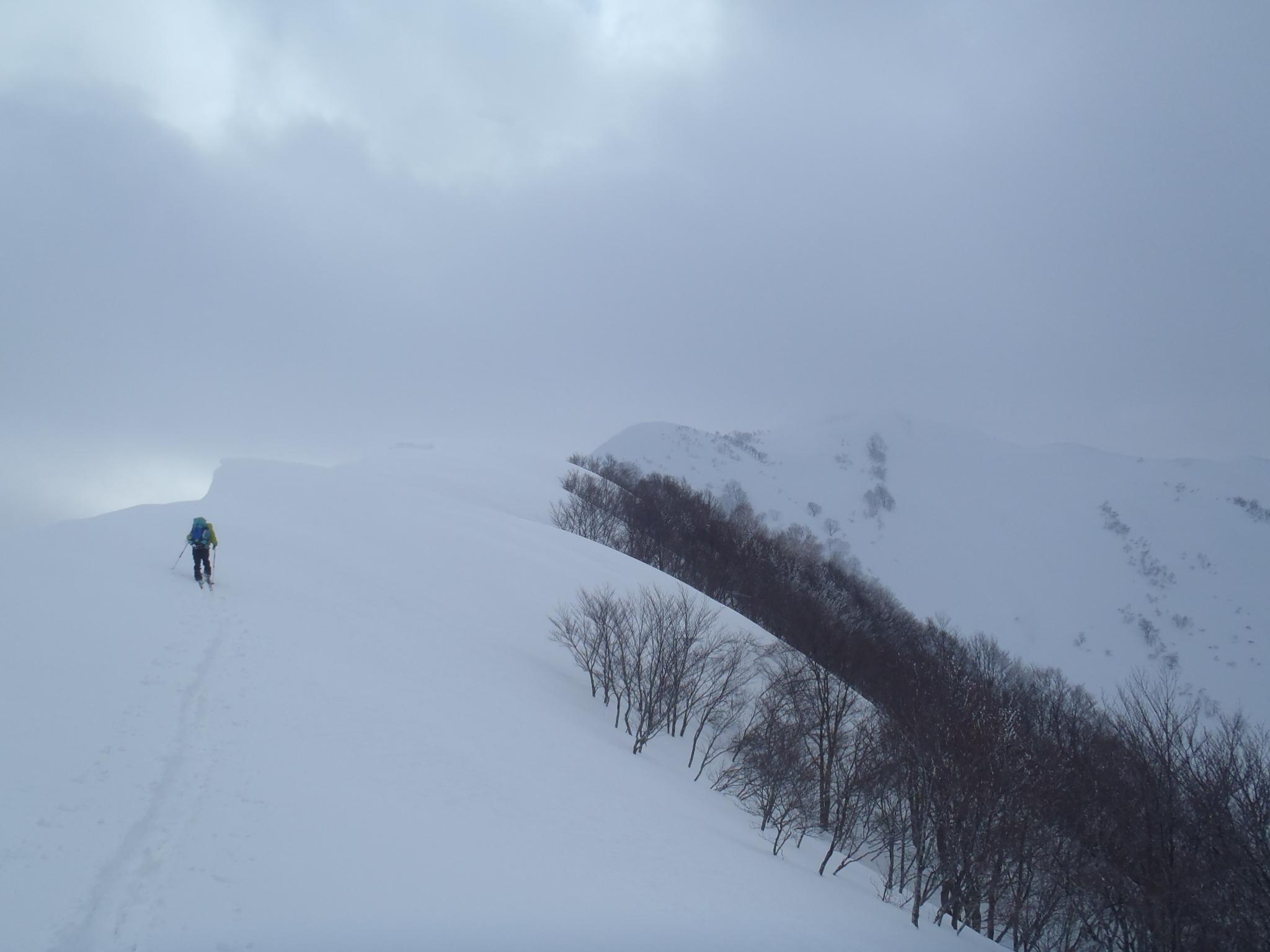 大毛無山への稜線