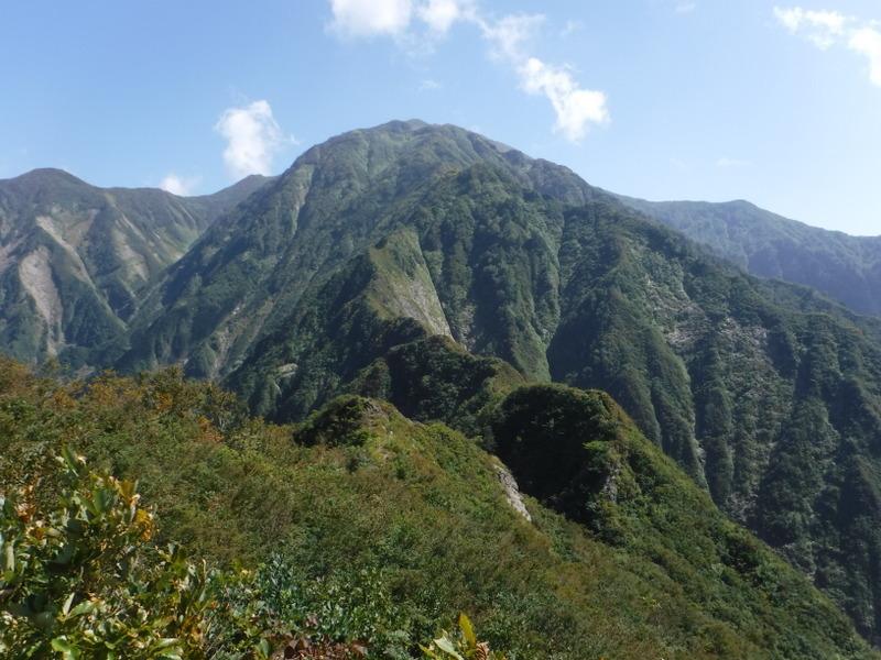 中ノ岳から越えてきたオカメノゾキ