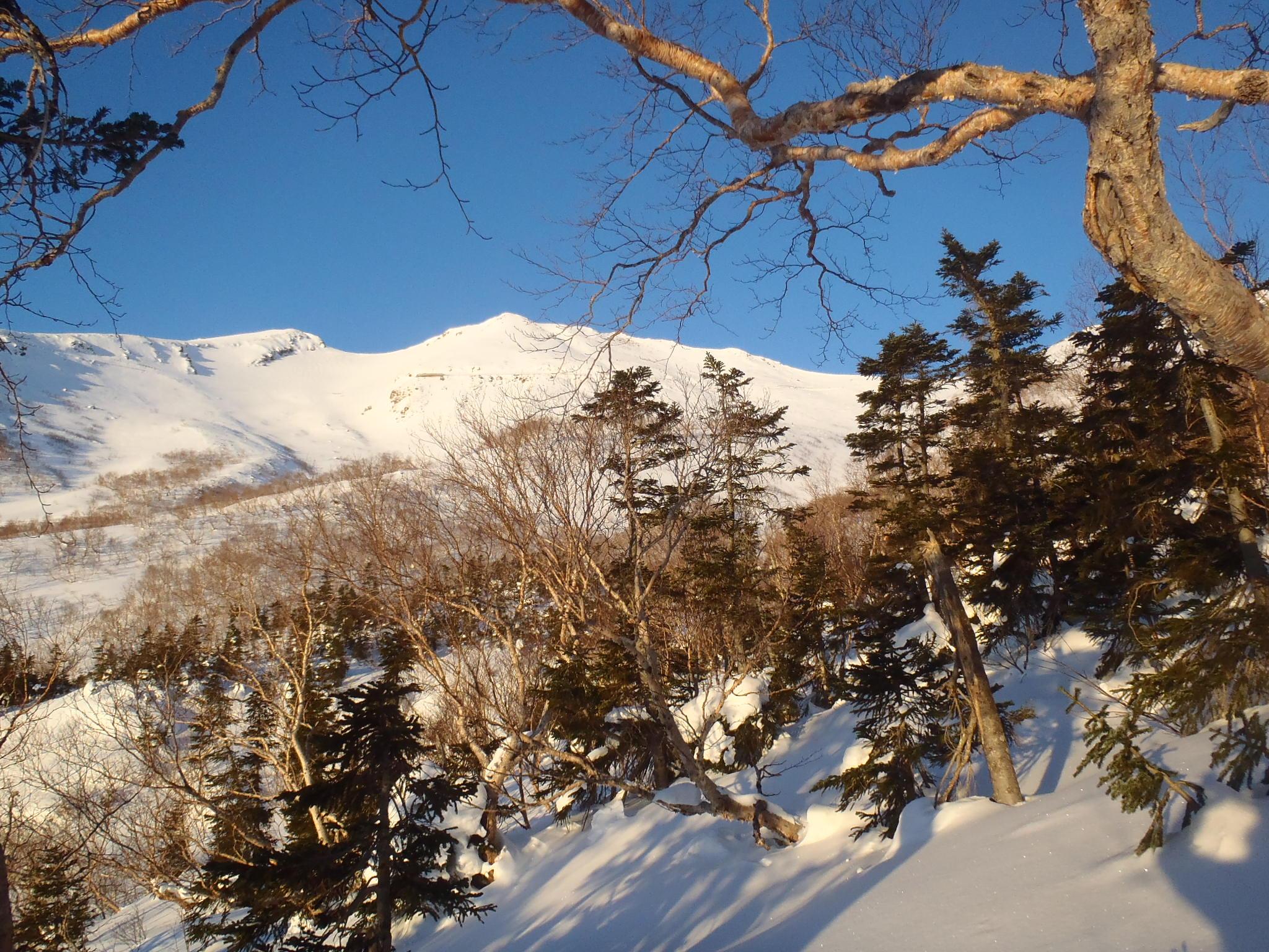 大黒岳(中央)と富士見岳(左)を望む