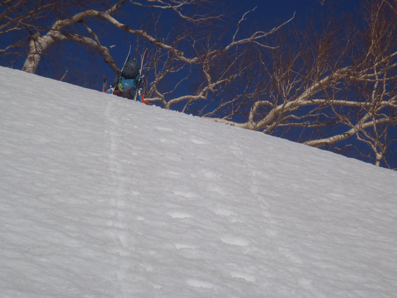急斜面をシートラ登高