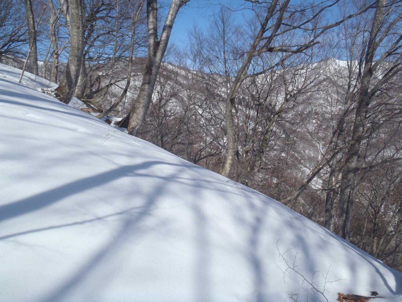 H1,436m小ピークからの下山尾根を望む