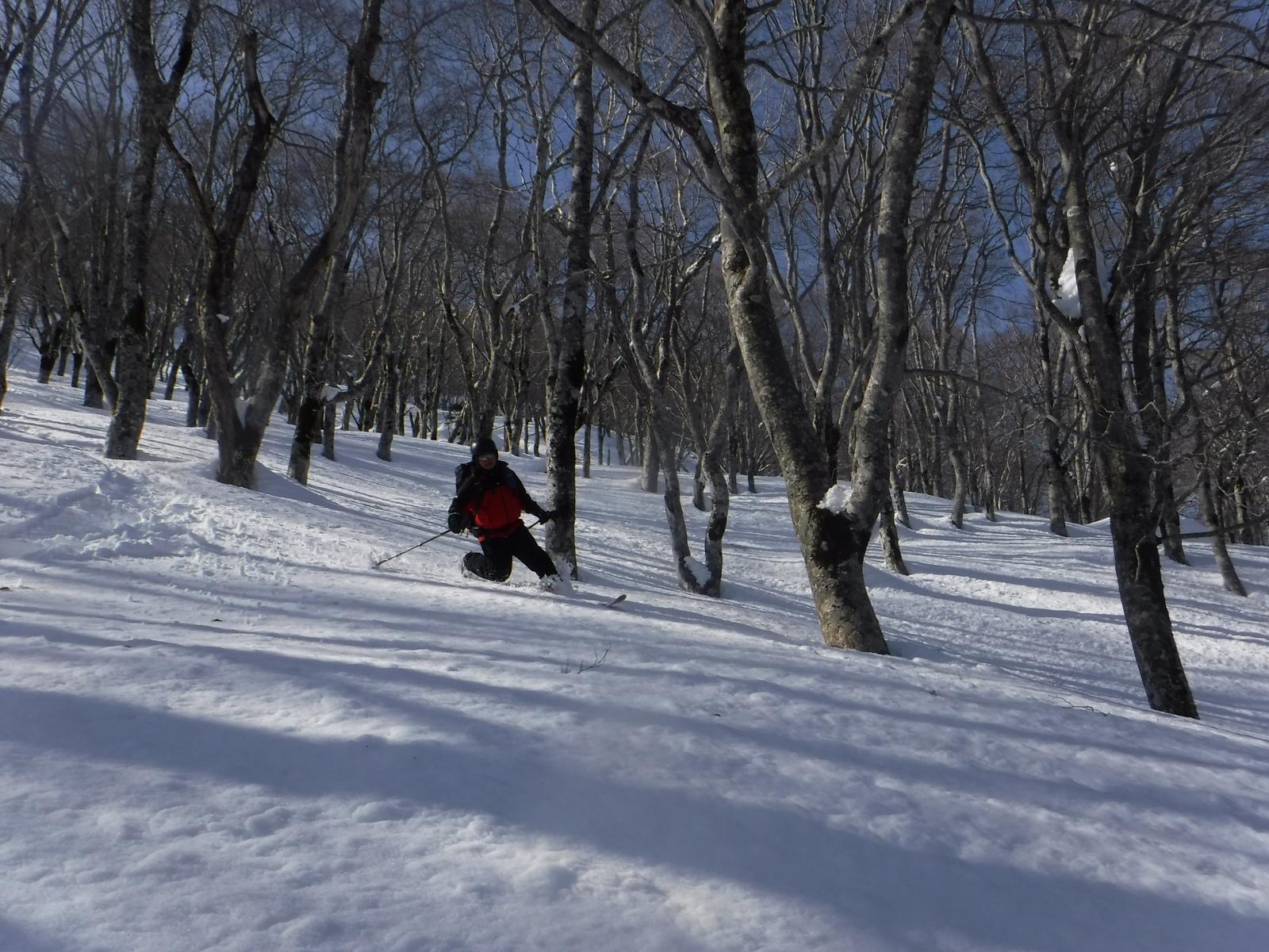 14:10 1750m付近、上部はやや重めの雪だが、楽しい滑り