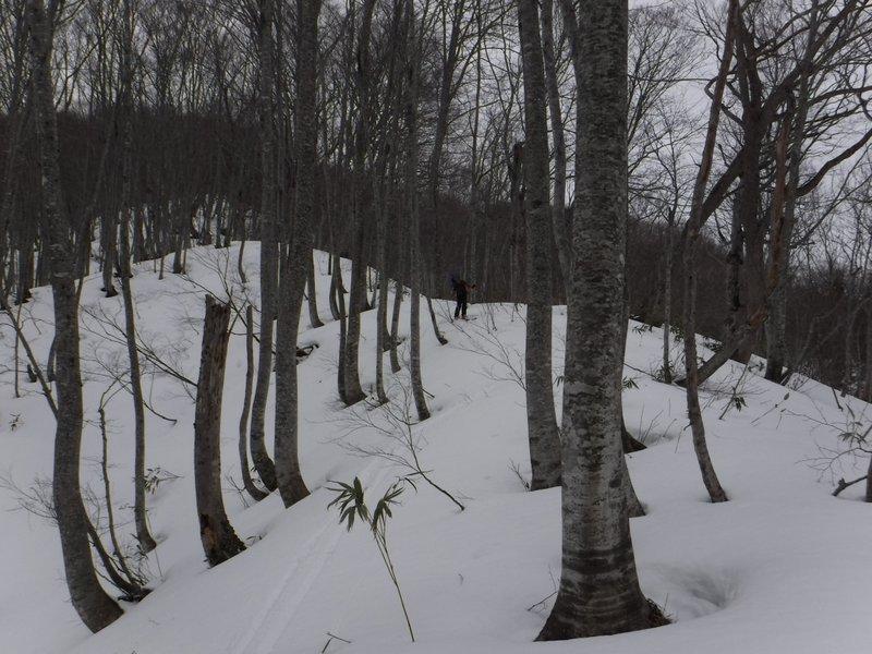 50cm程雪が多ければ、だいぶ快適であろうが・・・