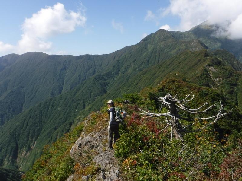 オカメノゾキ付近の岩稜、岩はしっかりしている