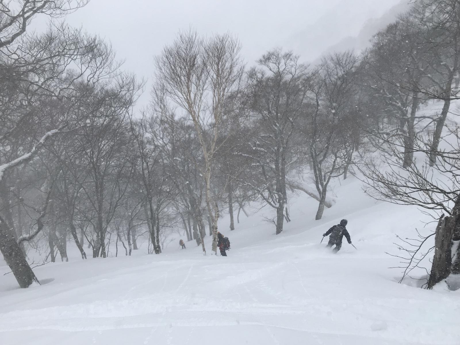 12:50 1540m付近、やや重めの新雪