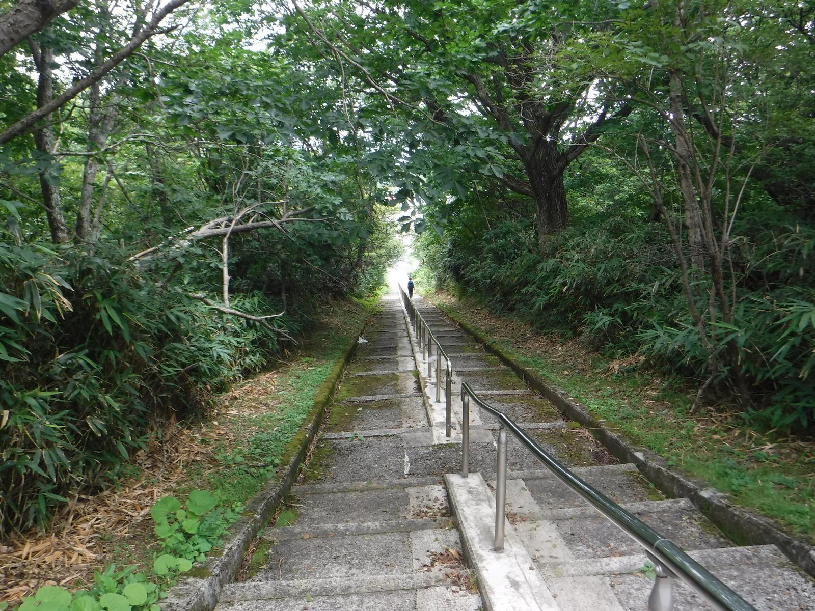 ロープウエー山麓駅から先の、車道沿いの近道