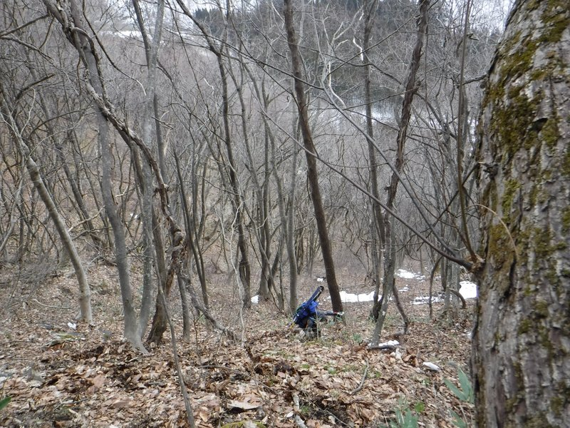 道路まで標高差250mほどだが、急斜面で、板を担ぎ、兼用靴で下るのは怖い、後ろ向きで木の枝をつかみながら