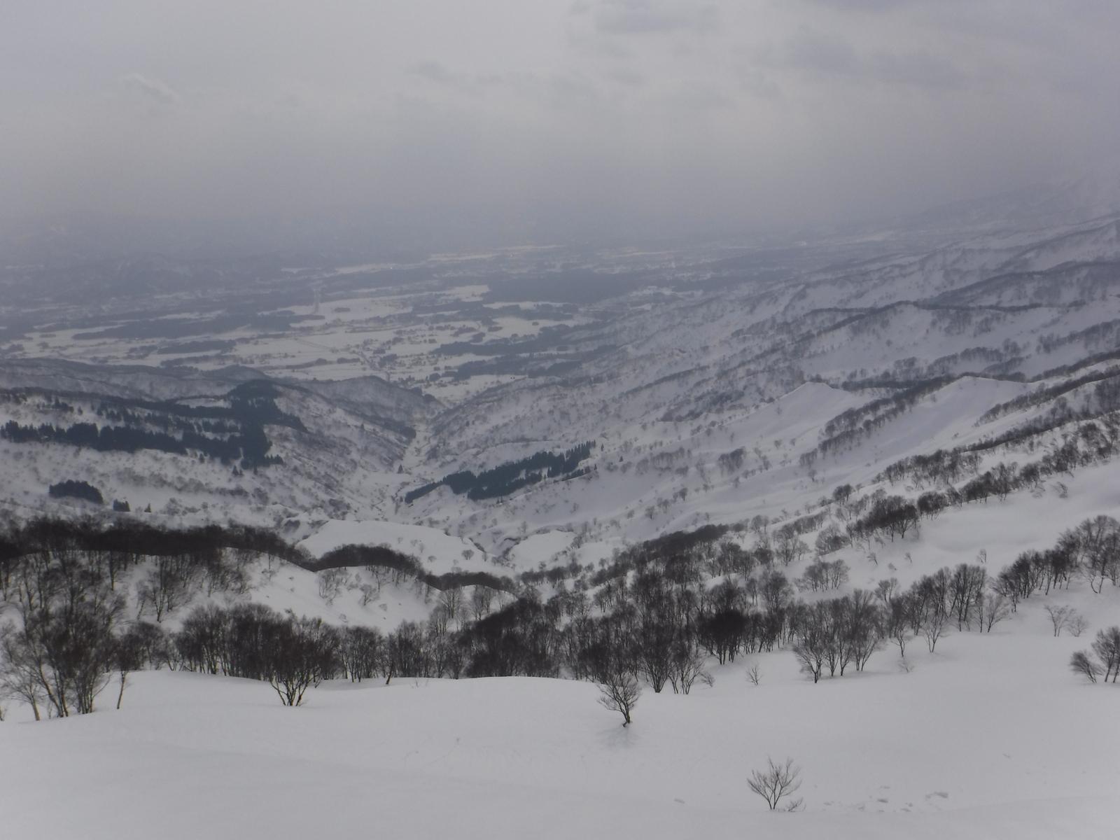 重倉山南東斜面、西野谷方面
