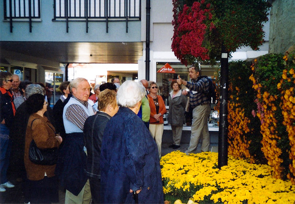 Chrysanthema in Lahr, 2005