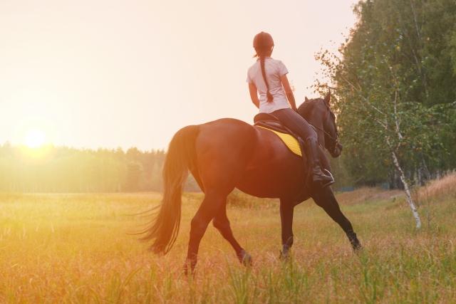 馬と共に・・合宿で自分を見つめながら、さらなる乗馬の世界へ