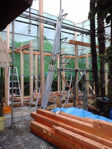 通し柱を建てながら梁、桁を組み立てて行きます。