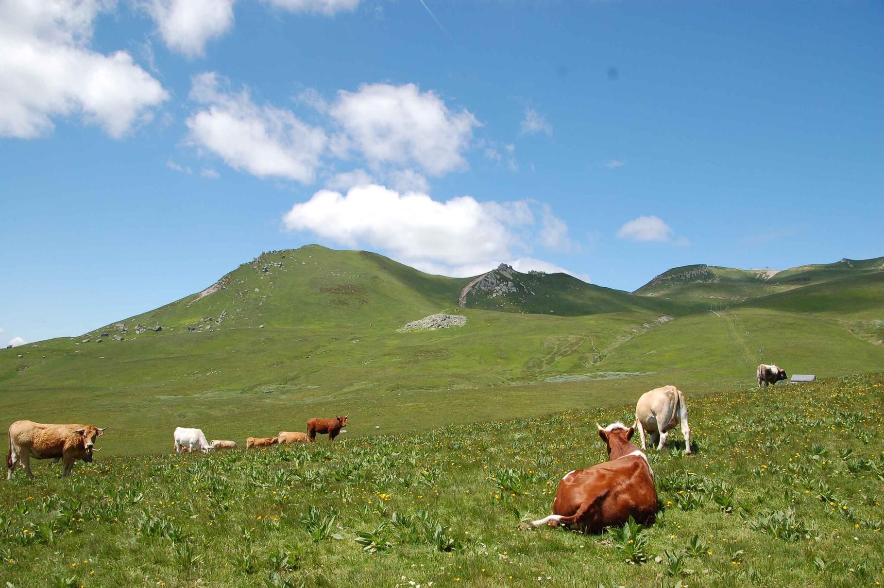 Club de randonnée de Romorantin Sologne - séjour à Picherande dans le Puy de Dôme