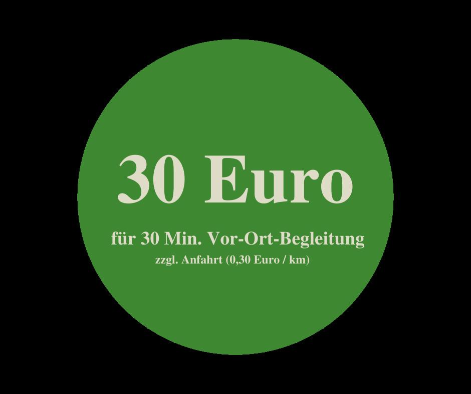 Preis Horsemanship 30 Euro pro 30 Minuten zzgl. Anfahrt