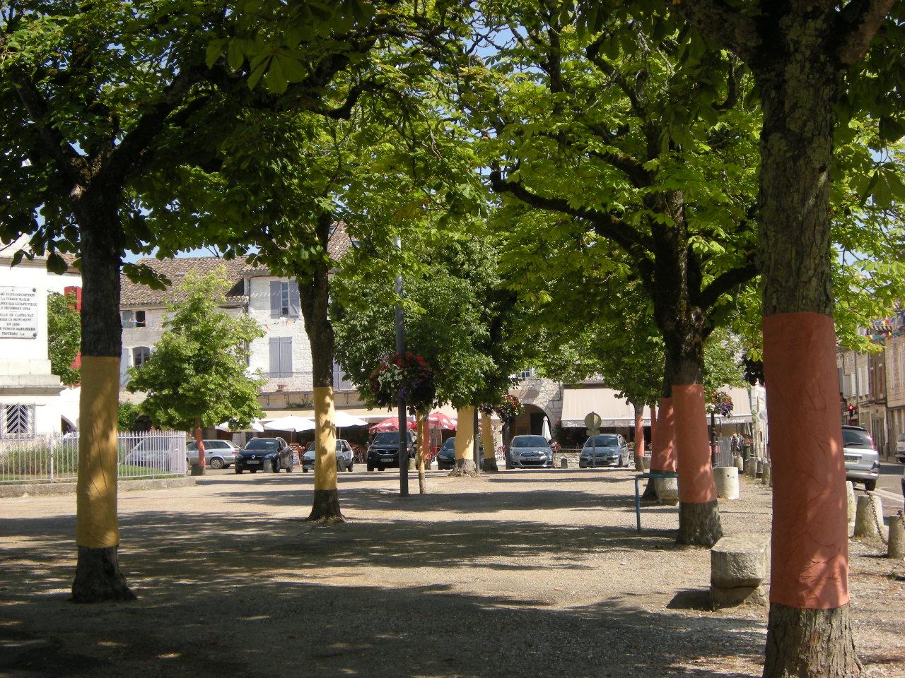 Les arbres de la place Gambetta