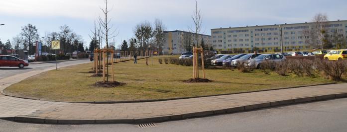 Eine von der SiLa Haus-und Grundstücksservice GmbH komplett betreute Außenanlage für die Strausberger Wohnungsbaugesellschaft mbH
