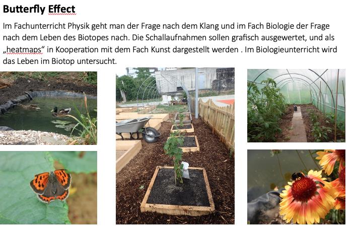 Flora und Fauna, Schulgarten, WWG