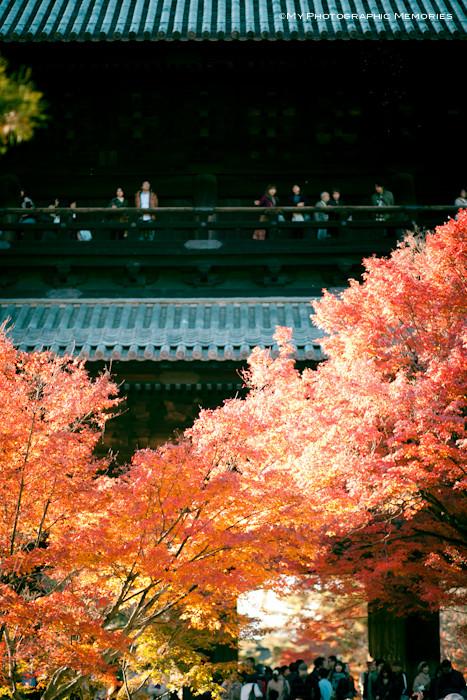 今回の開催場所は京都南禅寺!!!