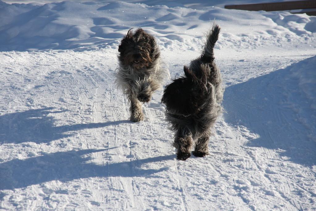 Wir zwei im Schnee sind unschlagbar