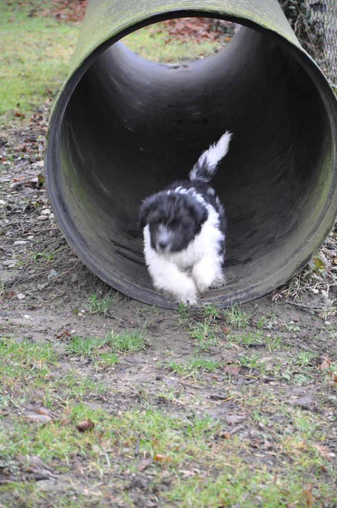 Der Tunnel macht mir keine Angst