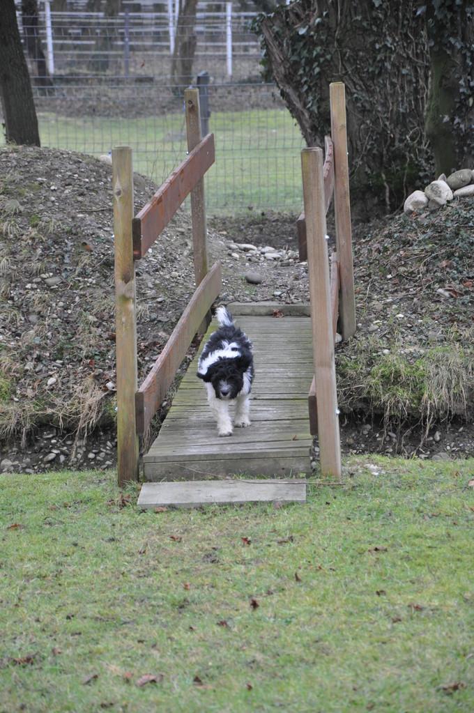 Ich gehe schon alleine über eine Brücke
