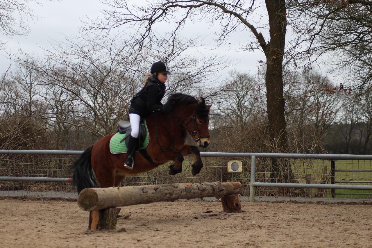 Sarah mit Waleska beim Pferdeführerschein Reiten