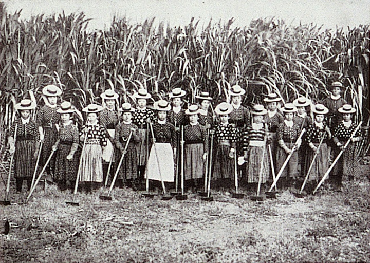 ハワイ移民の歴史 厳しい生活