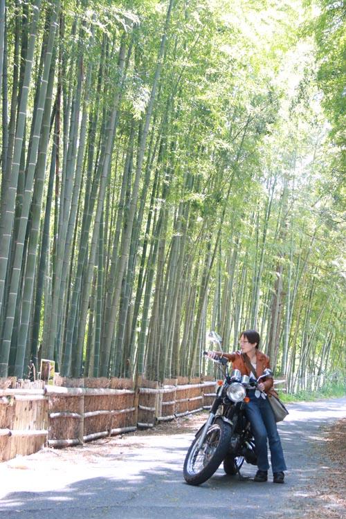 「知多の小京都(とってもピンポイント)」確かにここだけ京都っぽい