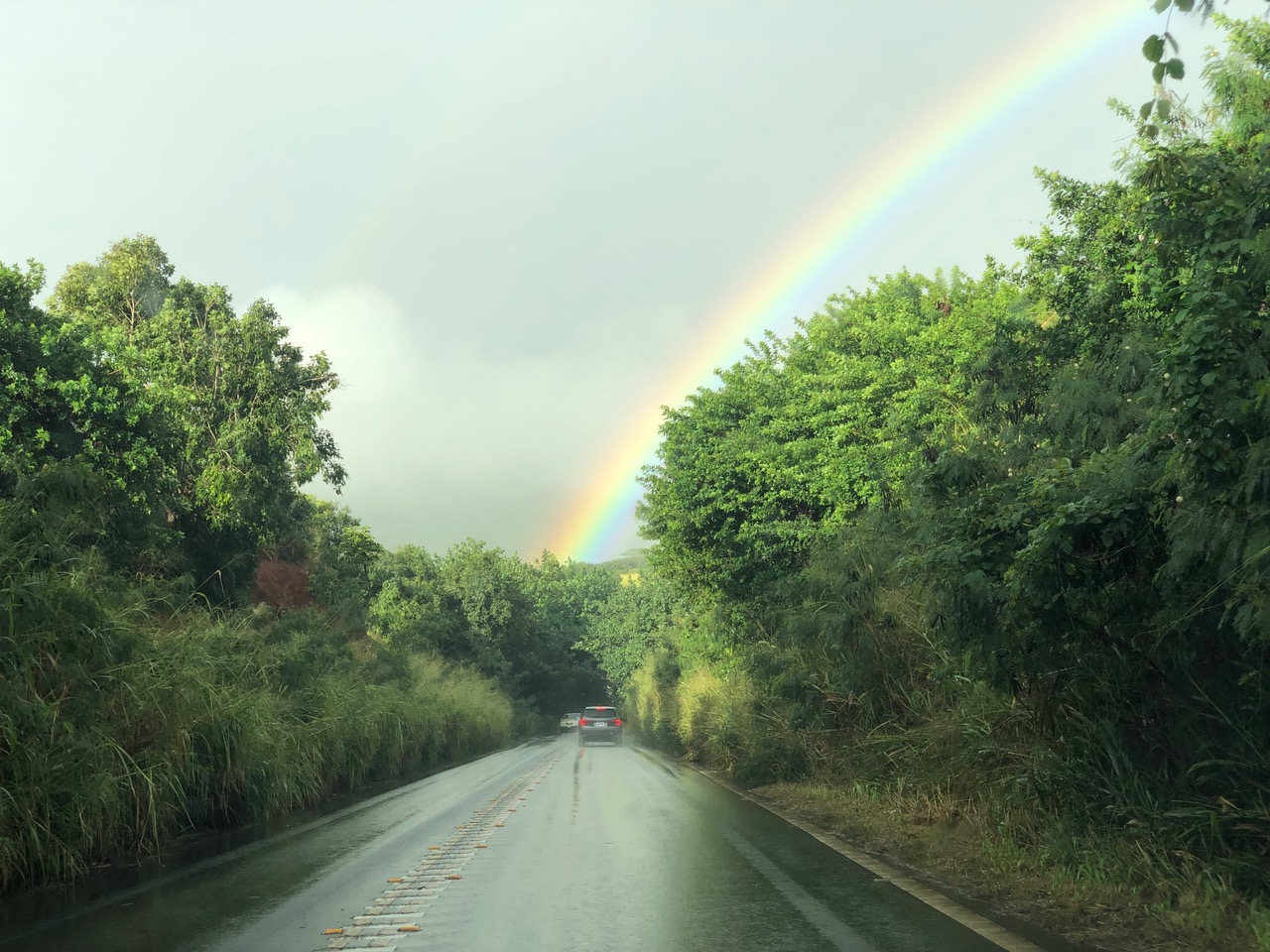 ...even driving along the road trying to get to the sunny south end of Kauai