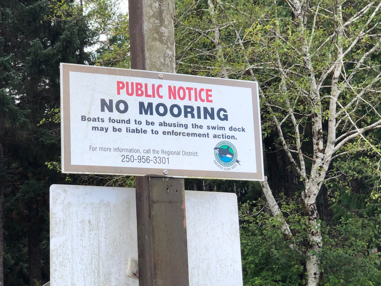 Had to read what mooring means...