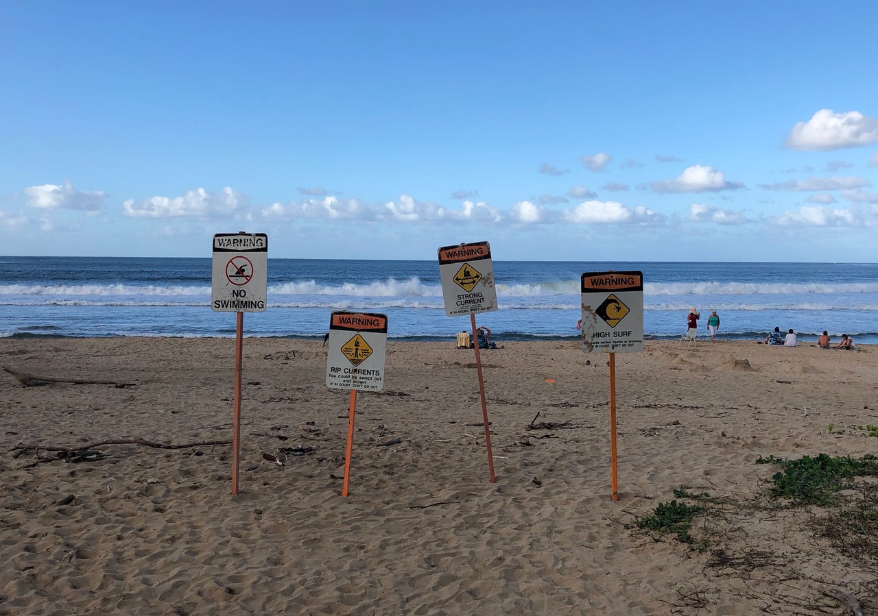 According to these sign's Hanalei Beach should not be used....but most don't care at all...the beach is full of tourists