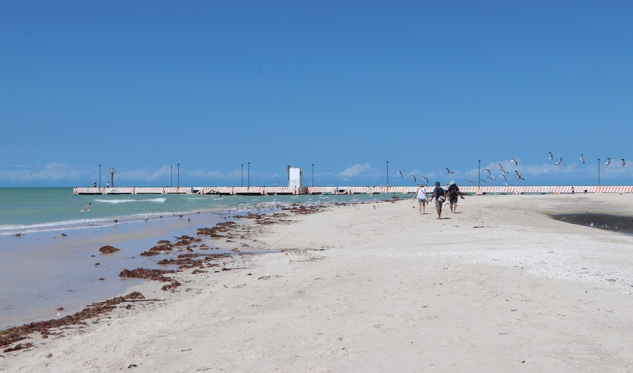This is our favourite spot on the beach in Celestun. A great place for Kite Foiling too!!!!